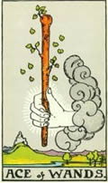 ACE OF WANDS Card