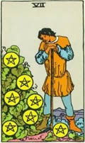SEVEN OF PENTACLES Card